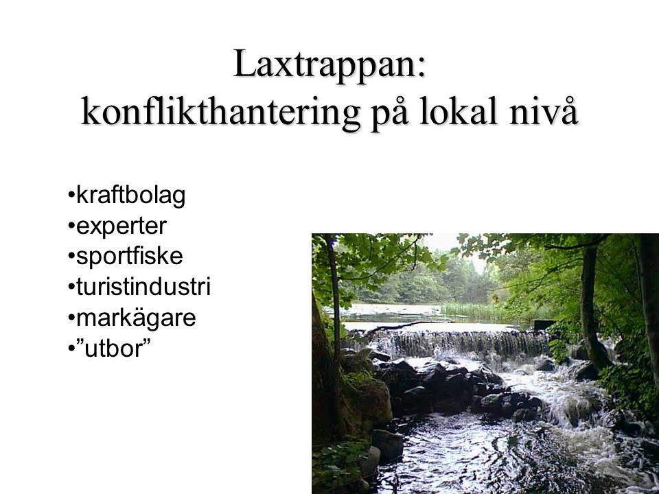 """Laxtrappan: konflikthantering på lokal nivå kraftbolag experter sportfiske turistindustri markägare """"utbor"""""""