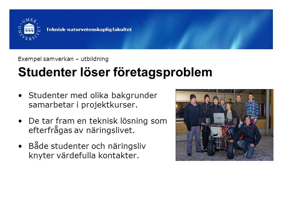 Teknisk-naturvetenskaplig fakultet Studenter löser företagsproblem Studenter med olika bakgrunder samarbetar i projektkurser. De tar fram en teknisk l