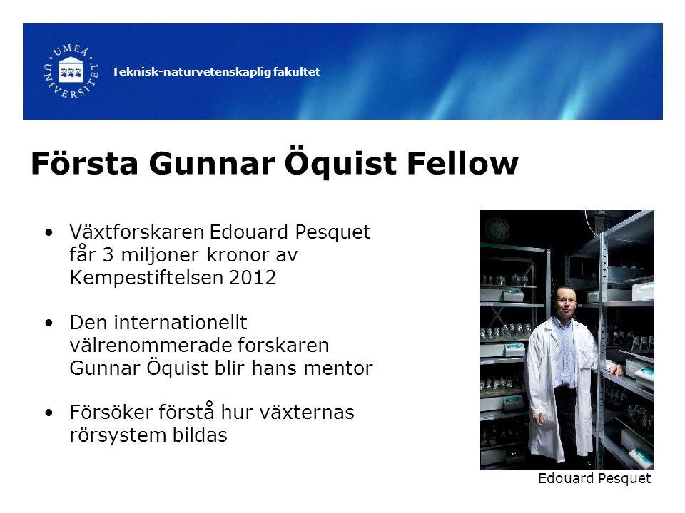 Teknisk-naturvetenskaplig fakultet Första Gunnar Öquist Fellow Växtforskaren Edouard Pesquet får 3 miljoner kronor av Kempestiftelsen 2012 Den interna