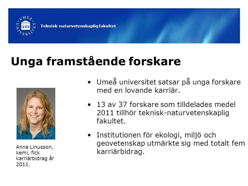 Teknisk-naturvetenskaplig fakultet Unga framstående forskare Umeå universitet satsar på unga forskare med en lovande karriär. 13 av 37 forskare som ti