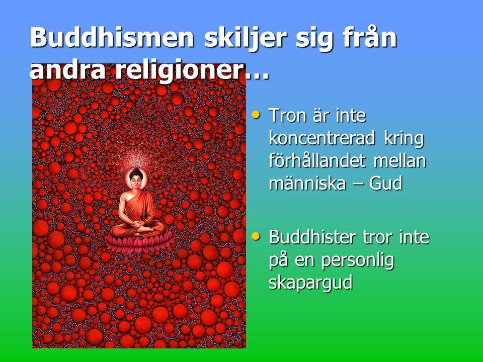 Tron är inte koncentrerad kring förhållandet mellan människa – Gud Tron är inte koncentrerad kring förhållandet mellan människa – Gud Buddhister tror