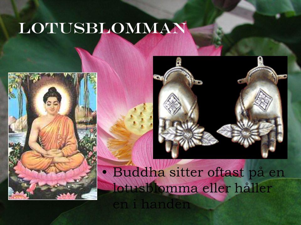 Lotusblomman Buddha sitter oftast på en lotusblomma eller håller en i handen