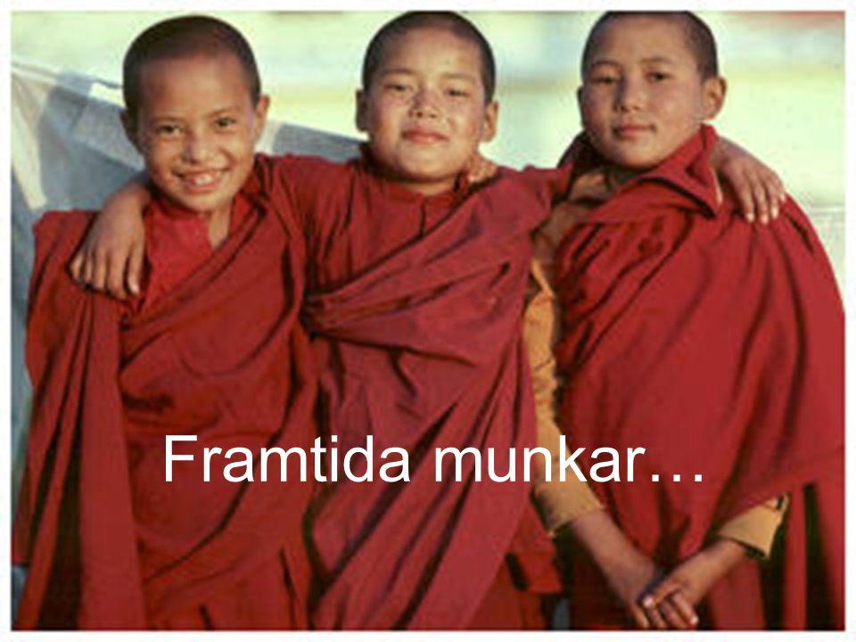Framtida munkar…