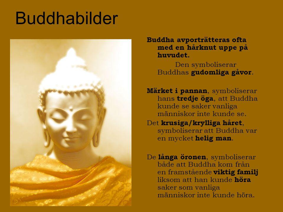 Buddhabilder Buddha avporträtteras ofta med en hårknut uppe på huvudet. Den symboliserar Buddhas gudomliga gåvor. Märket i pannan, symboliserar hans t