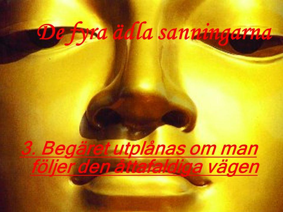 Rätt Åsikt –Accepterar buddhismens lära om människans situation i världen –De fyra ädla sanningarna och karmas lag Den åttafaldiga vägen