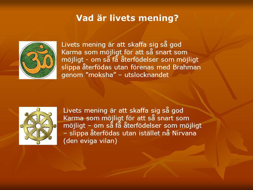 Vad är livets mening? Livets mening är att skaffa sig så god Karma som möjligt för att så snart som möjligt - om så få återfödelser som möjligt slippa