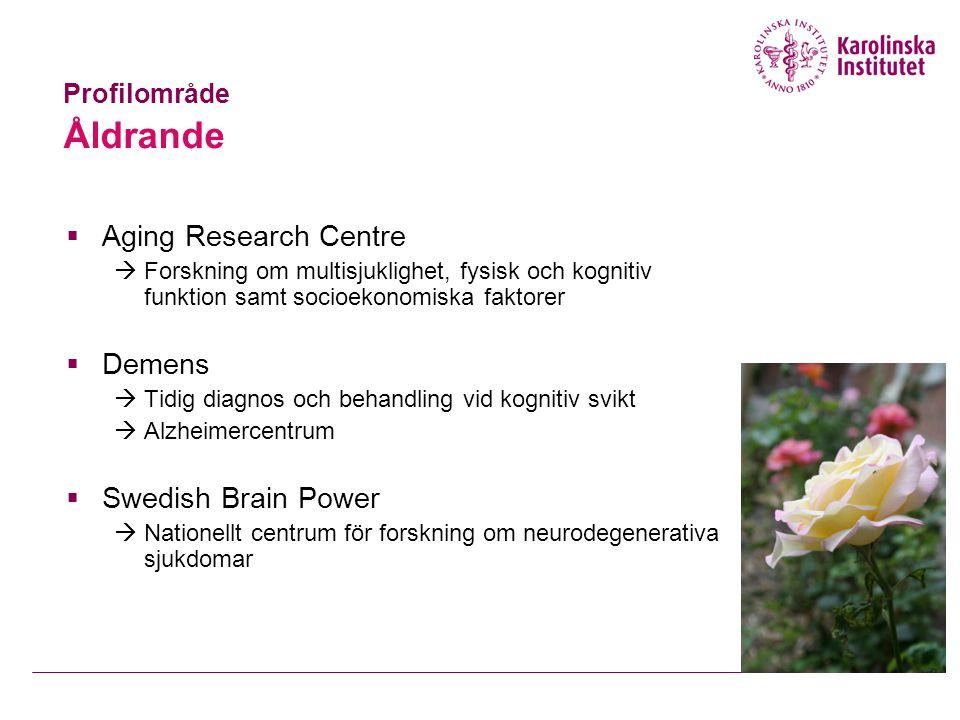  Aging Research Centre  Forskning om multisjuklighet, fysisk och kognitiv funktion samt socioekonomiska faktorer  Demens  Tidig diagnos och behandling vid kognitiv svikt  Alzheimercentrum  Swedish Brain Power  Nationellt centrum för forskning om neurodegenerativa sjukdomar Profilområde Åldrande