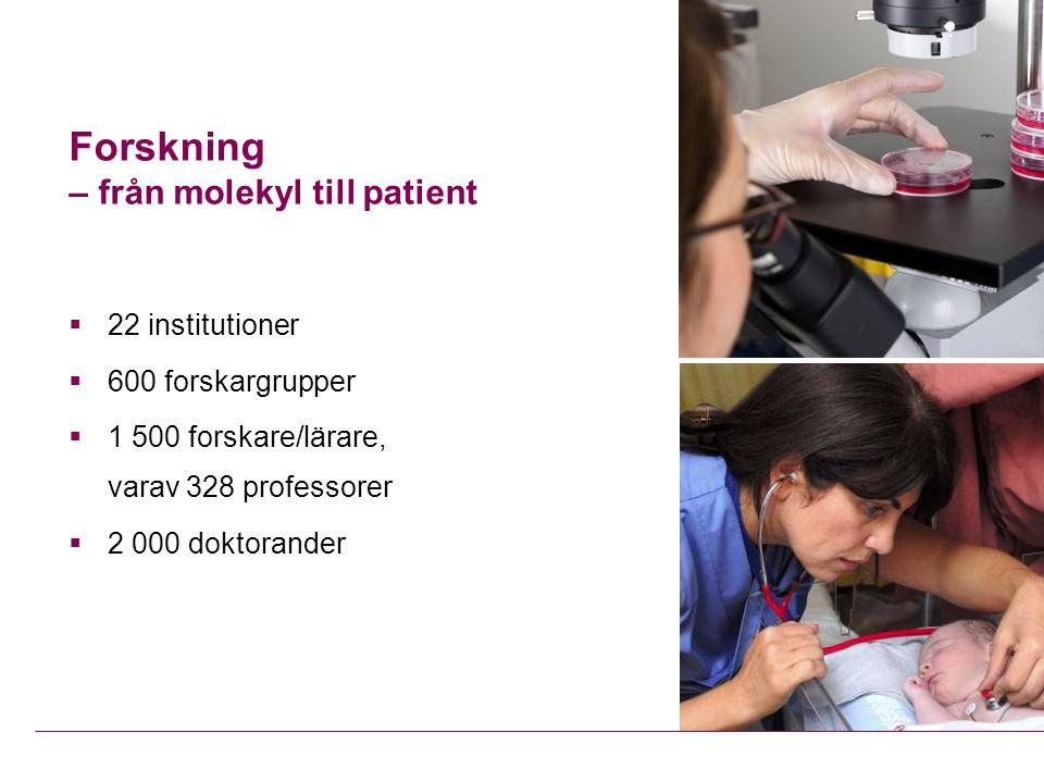 Forskning – från molekyl till patient  22 institutioner  600 forskargrupper  1 500 forskare/lärare, varav 328 professorer  2 000 doktorander