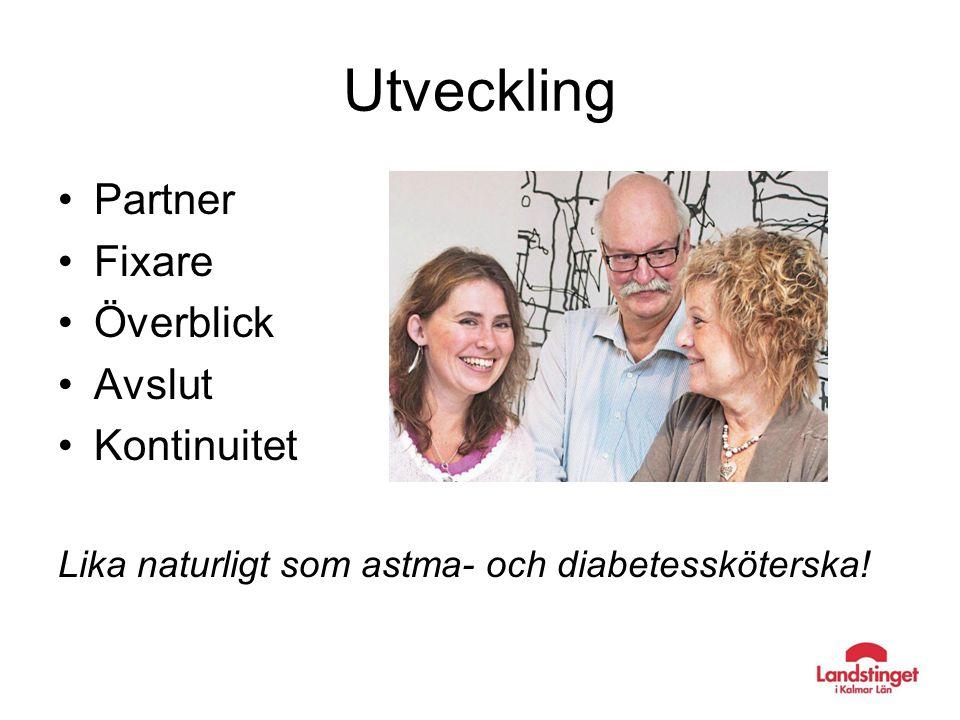Utveckling Partner Fixare Överblick Avslut Kontinuitet Lika naturligt som astma- och diabetessköterska!