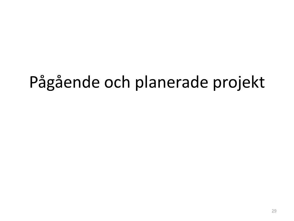 Pågående och planerade projekt 29