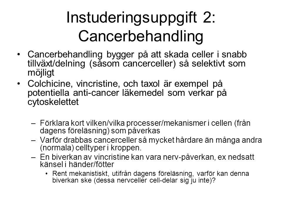 Instuderingsuppgift 2: Cancerbehandling Cancerbehandling bygger på att skada celler i snabb tillväxt/delning (såsom cancerceller) så selektivt som möj