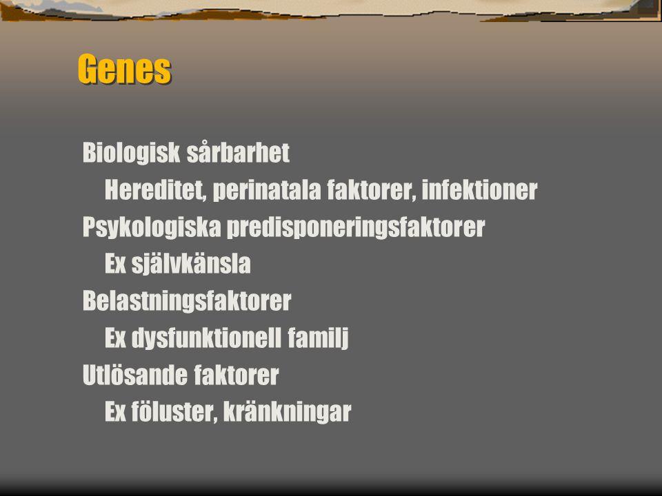 Genes Biologisk sårbarhet Hereditet, perinatala faktorer, infektioner Psykologiska predisponeringsfaktorer Ex självkänsla Belastningsfaktorer Ex dysfu