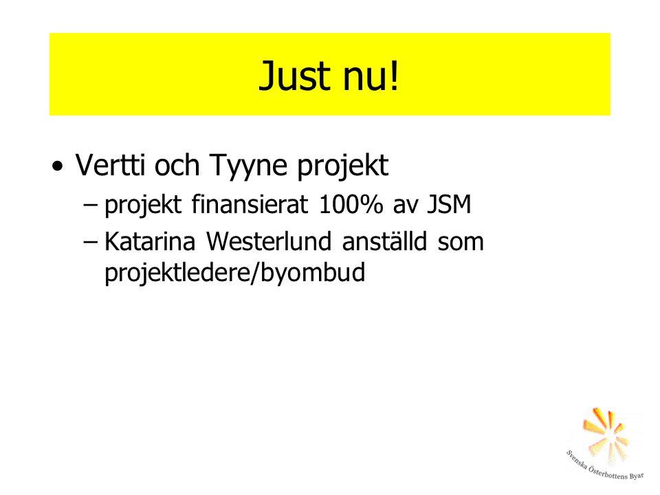 Just nu! Vertti och Tyyne projekt –projekt finansierat 100% av JSM –Katarina Westerlund anställd som projektledere/byombud