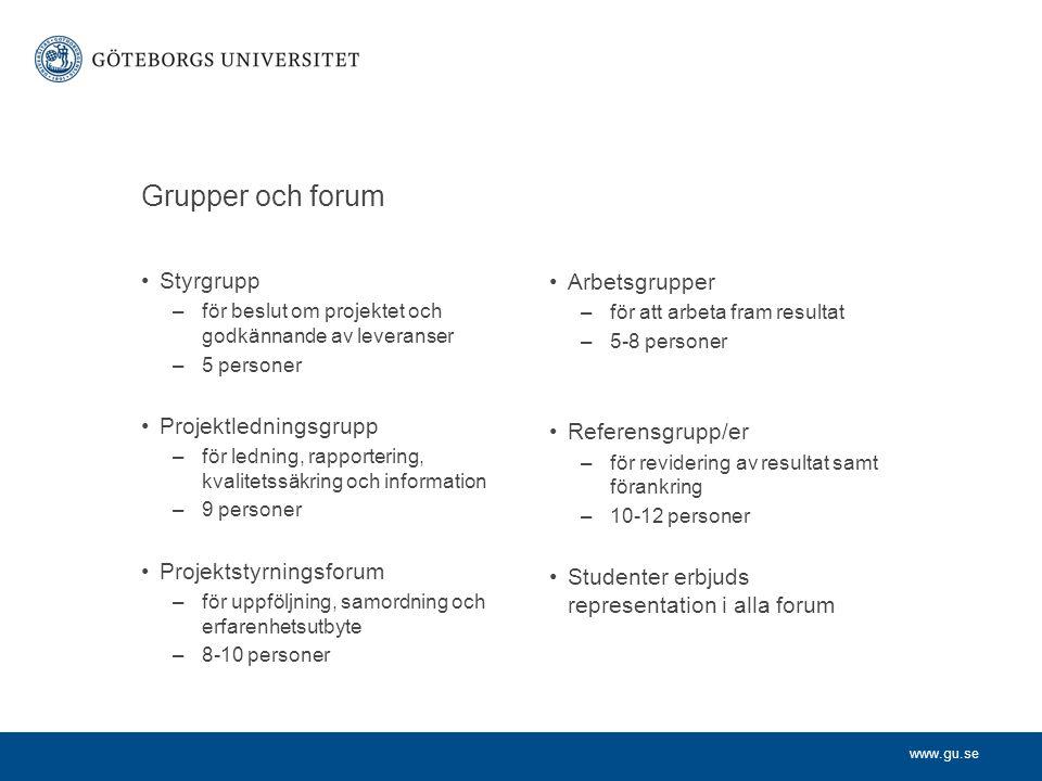 www.gu.se Grupper och forum Styrgrupp –för beslut om projektet och godkännande av leveranser –5 personer Projektledningsgrupp –för ledning, rapporteri