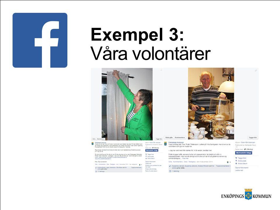Exempel 3: Våra volontärer