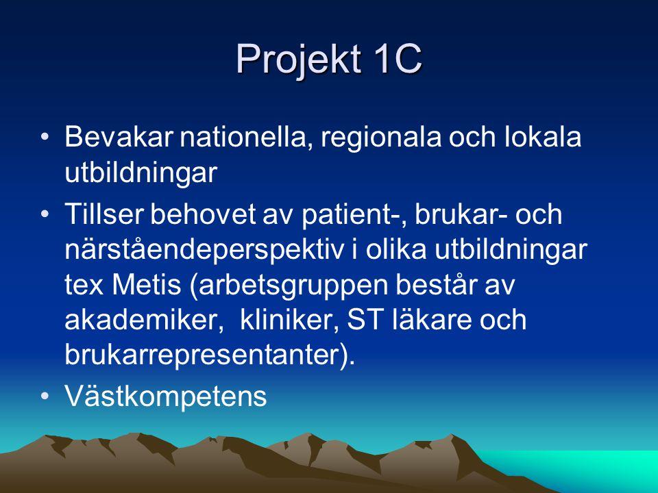 Projekt 1C Bevakar nationella, regionala och lokala utbildningar Tillser behovet av patient-, brukar- och närståendeperspektiv i olika utbildningar tex Metis (arbetsgruppen består av akademiker, kliniker, ST läkare och brukarrepresentanter).