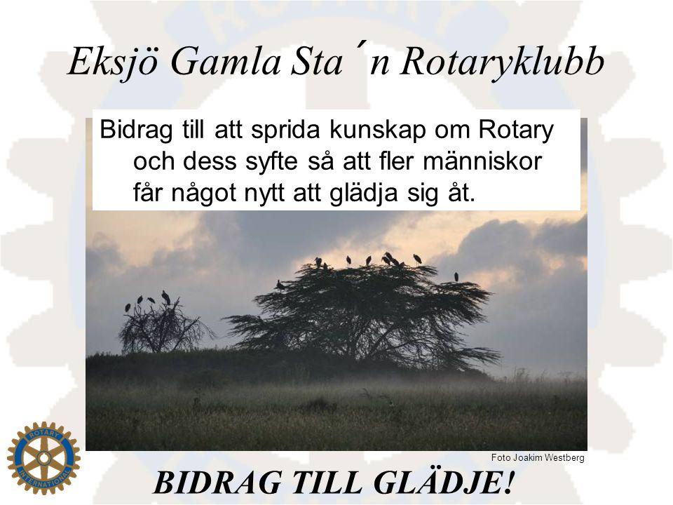 Eksjö Gamla Sta´n Rotaryklubb Bidrag till att sprida kunskap om Rotary och dess syfte så att fler människor får något nytt att glädja sig åt. BIDRAG T