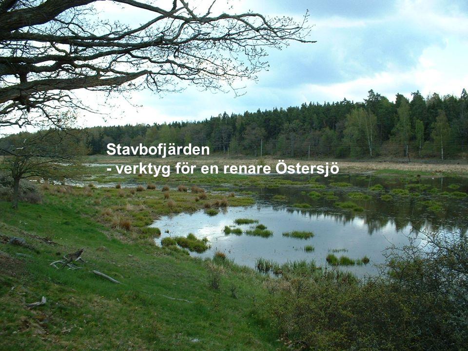 Stavbofjärden - verktyg för en renare Östersjö