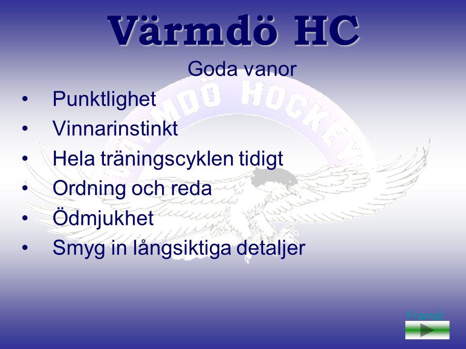 Värmdö HC Huvudsyftet är att bedriva hockeyverksamhet, för både killar och tjejer, och ge dem en hockeyutbildning av hög kvalité på hemmaplan.