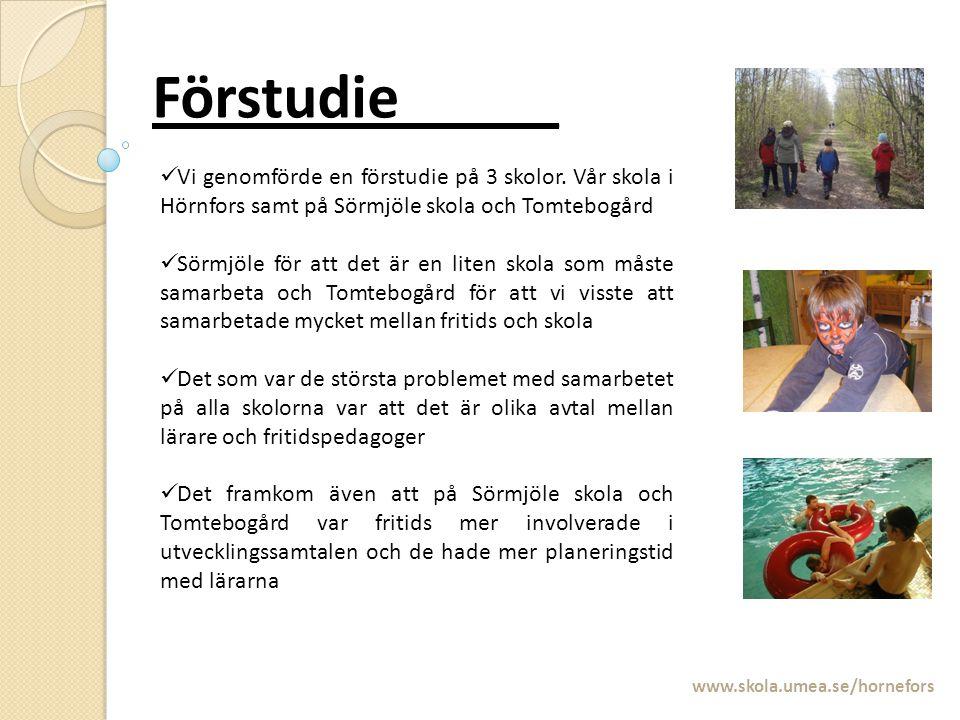 Förstudie_____ www.skola.umea.se/hornefors Vi genomförde en förstudie på 3 skolor. Vår skola i Hörnfors samt på Sörmjöle skola och Tomtebogård Sörmjöl