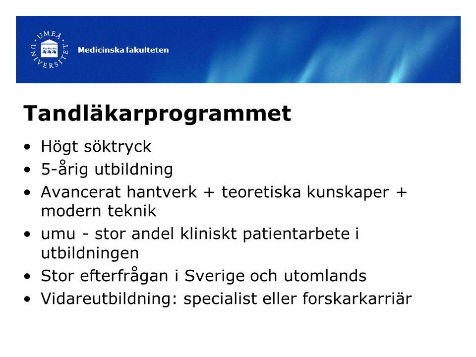 Tandläkarprogrammet Högt söktryck 5-årig utbildning Avancerat hantverk + teoretiska kunskaper + modern teknik umu - stor andel kliniskt patientarbete