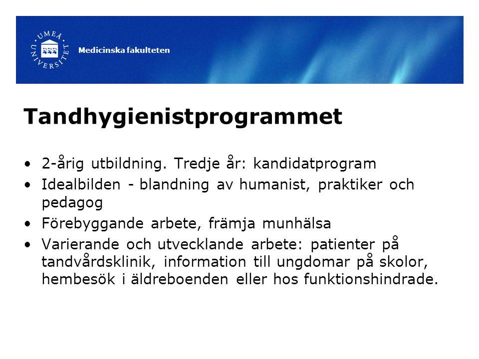 Tandhygienistprogrammet 2-årig utbildning. Tredje år: kandidatprogram Idealbilden - blandning av humanist, praktiker och pedagog Förebyggande arbete,