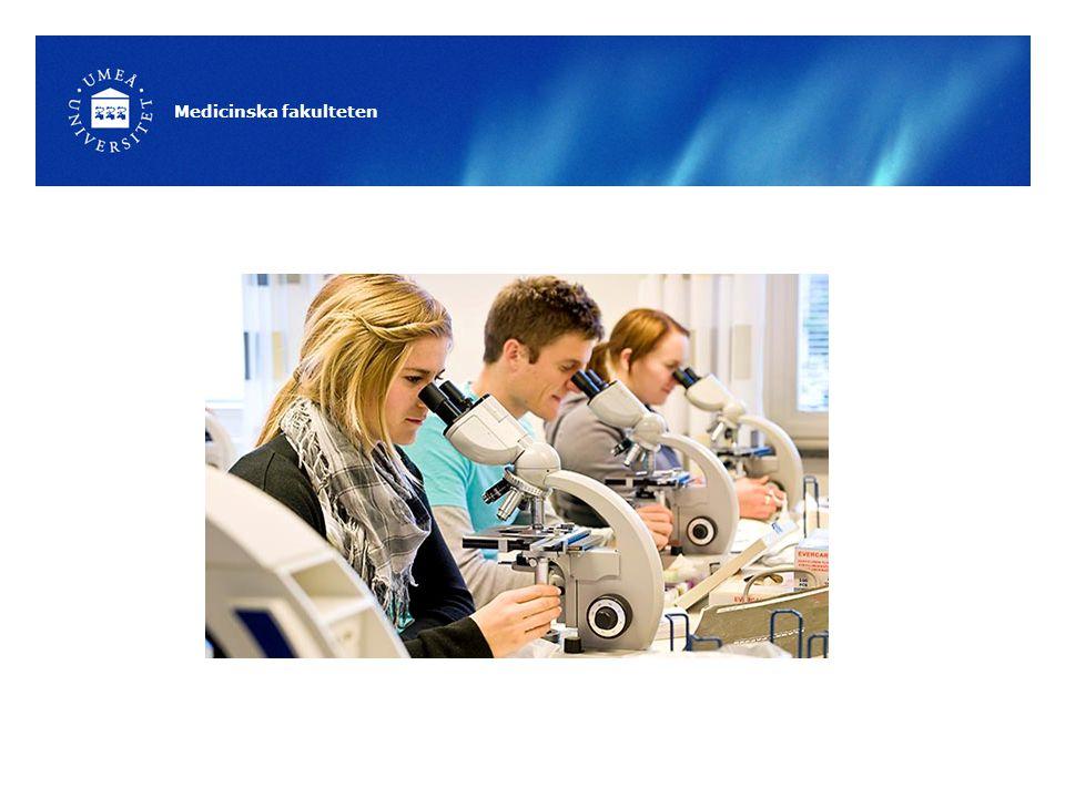 Biomedicinsk analytiker- programmet 3-årig utbildning Blir expert på diagnostiska metoder Självständigt utföra analyser, tolka och utvärdera resultat Brett: från klinisk diagnostik till forskning 2 inriktningar: klinisk fysiologi och laboratoriemedicin, väljs från början.