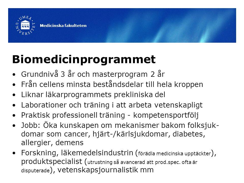 Biomedicinprogrammet Grundnivå 3 år och masterprogram 2 år Från cellens minsta beståndsdelar till hela kroppen Liknar läkarprogrammets prekliniska del