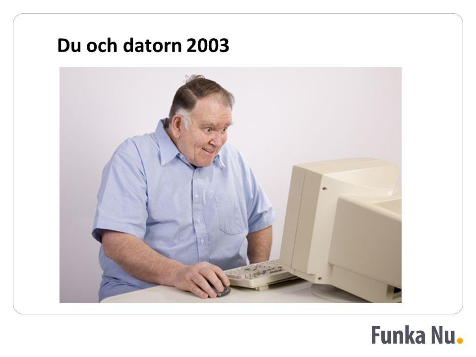 Du och datorn 2003