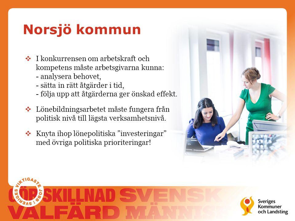 Norsjö kommun  I konkurrensen om arbetskraft och kompetens måste arbetsgivarna kunna: - analysera behovet, - sätta in rätt åtgärder i tid, - följa up