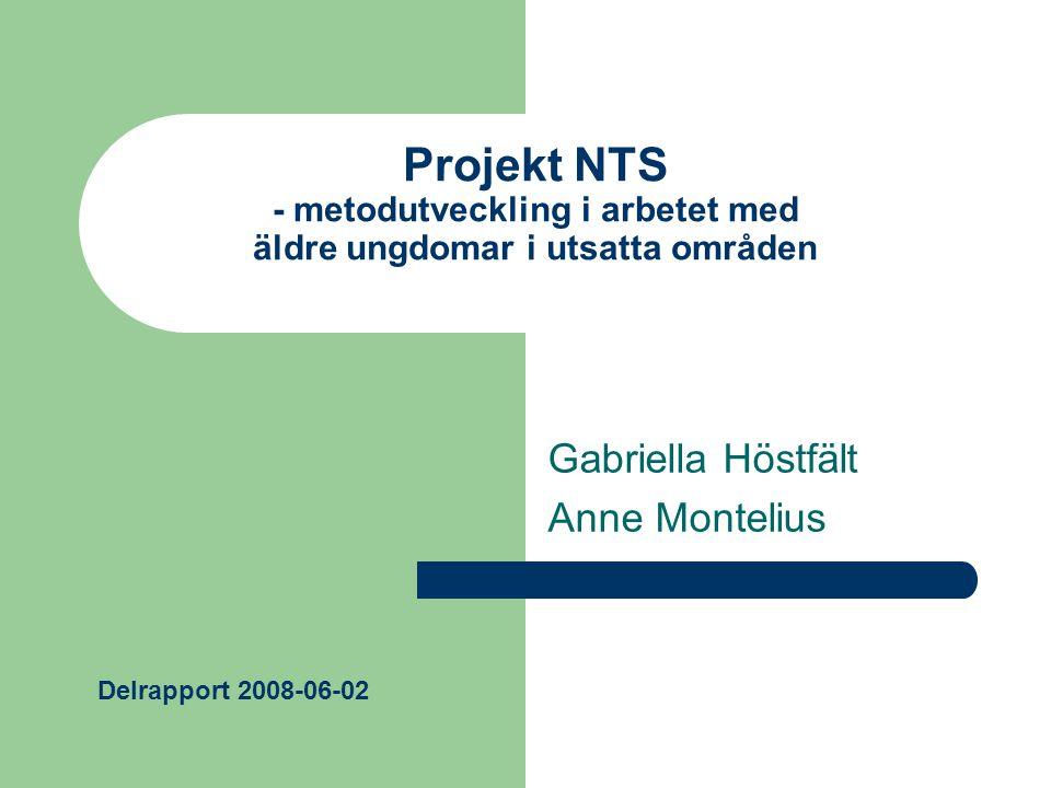 Projekt NTS - metodutveckling i arbetet med äldre ungdomar i utsatta områden Gabriella Höstfält Anne Montelius Delrapport 2008-06-02