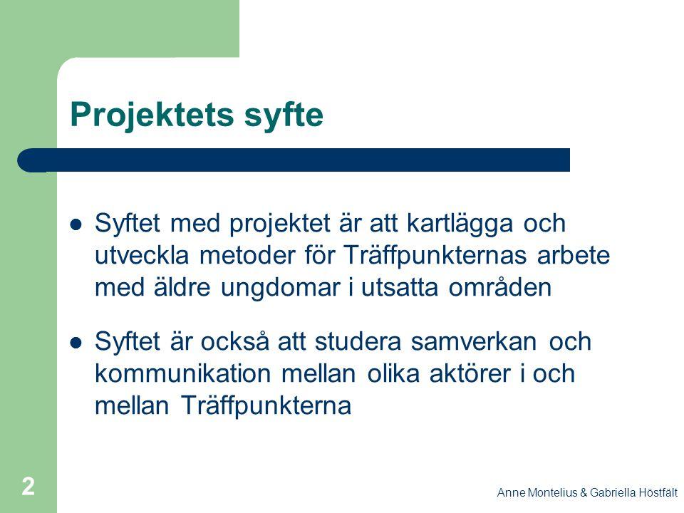 Anne Montelius & Gabriella Höstfält 2 Projektets syfte Syftet med projektet är att kartlägga och utveckla metoder för Träffpunkternas arbete med äldre