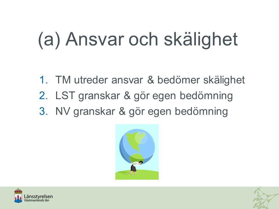 (a) Ansvar och skälighet 1.TM utreder ansvar & bedömer skälighet 2.LST granskar & gör egen bedömning 3.NV granskar & gör egen bedömning