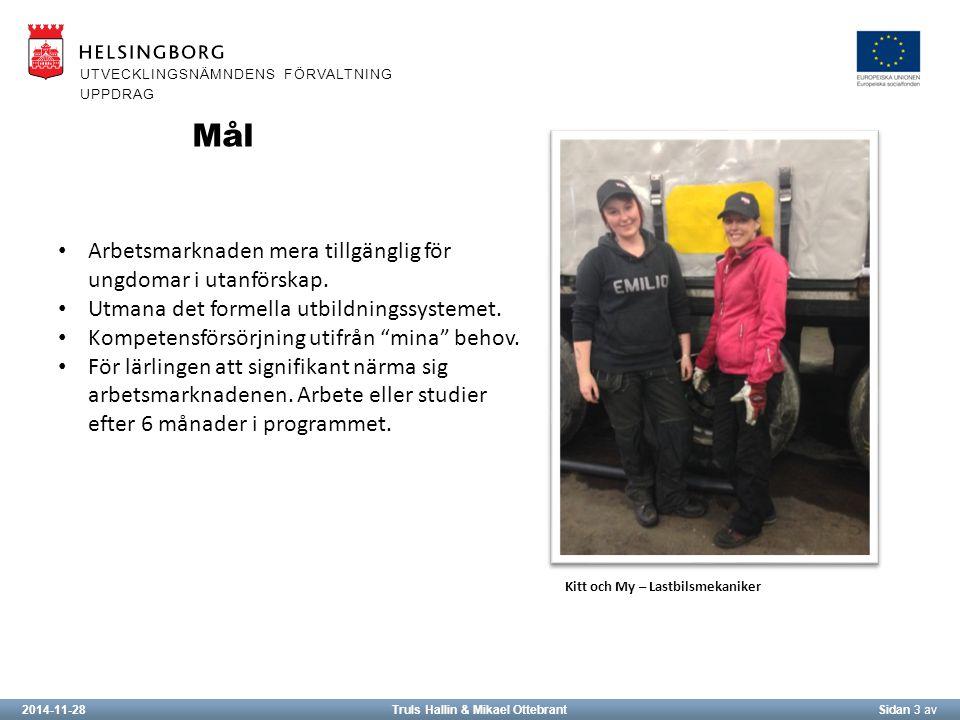 2014-11-28Truls Hallin & Mikael OttebrantSidan 3 av UTVECKLINGSNÄMNDENS FÖRVALTNING UPPDRAG Arbetsmarknaden mera tillgänglig för ungdomar i utanförskap.