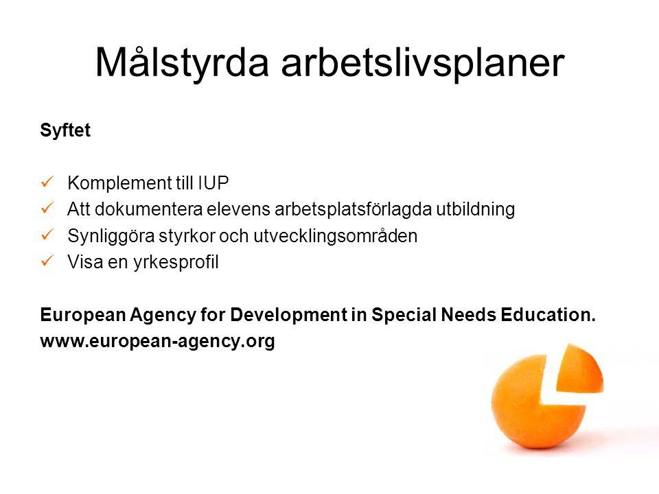 Målstyrda arbetslivsplaner Syftet Komplement till IUP Att dokumentera elevens arbetsplatsförlagda utbildning Synliggöra styrkor och utvecklingsområden Visa en yrkesprofil European Agency for Development in Special Needs Education.