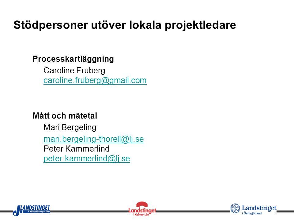 Stödpersoner utöver lokala projektledare Processkartläggning Caroline Fruberg caroline.fruberg@gmail.com caroline.fruberg@gmail.com Mått och mätetal M