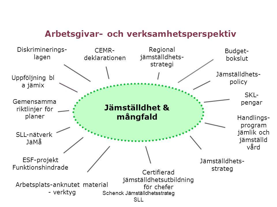 Schenck Jämställdhetsstrateg SLL Jämställdhet & mångfald SKL- pengar CEMR- deklarationen Gemensamma riktlinjer för planer Arbetsgivar- och verksamhets