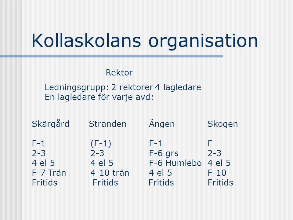 Kollaskolans organisation Rektor Ledningsgrupp: 2 rektorer 4 lagledare En lagledare för varje avd: Skärgård Stranden ÄngenSkogen F-1(F-1)F-1F 2-32-3F-