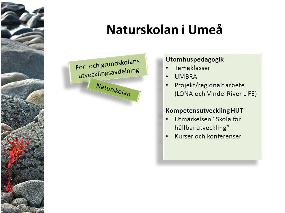 För- och grundskolans utvecklingsavdelning För- och grundskolans utvecklingsavdelning Naturskolan Naturskolan i Umeå Utomhuspedagogik Temaklasser UMBRA Projekt/regionalt arbete (LONA och Vindel River LIFE) Kompetensutveckling HUT Utmärkelsen Skola för hållbar utveckling Kurser och konferenser Utomhuspedagogik Temaklasser UMBRA Projekt/regionalt arbete (LONA och Vindel River LIFE) Kompetensutveckling HUT Utmärkelsen Skola för hållbar utveckling Kurser och konferenser