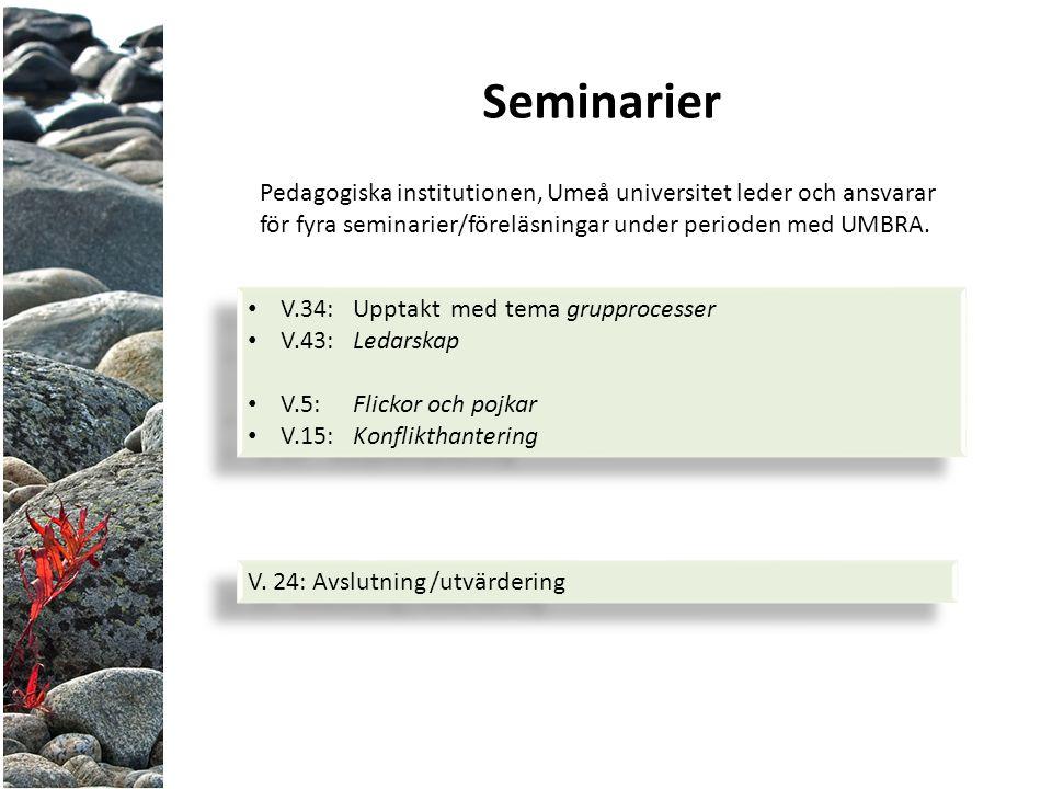 Seminarier Pedagogiska institutionen, Umeå universitet leder och ansvarar för fyra seminarier/föreläsningar under perioden med UMBRA.