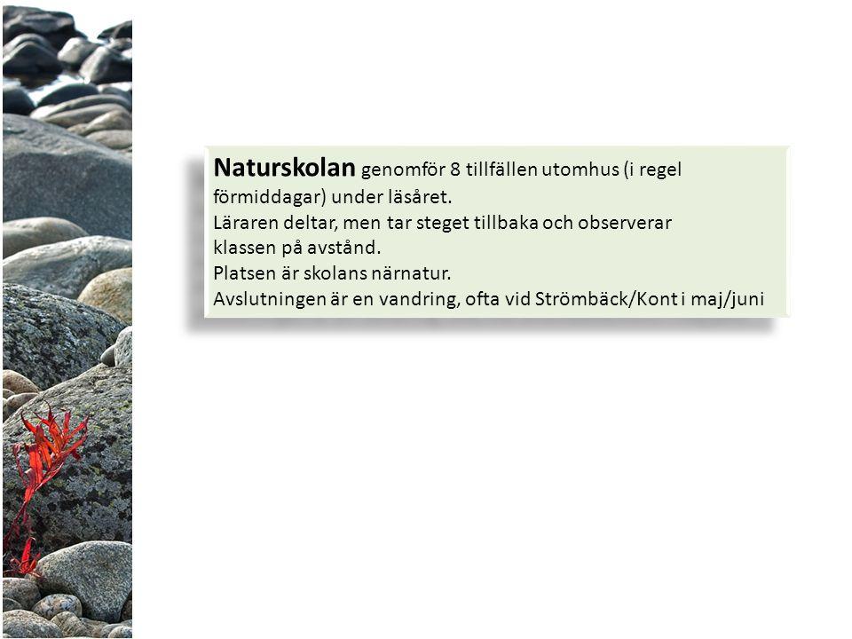 Naturskolan genomför 8 tillfällen utomhus (i regel förmiddagar) under läsåret.