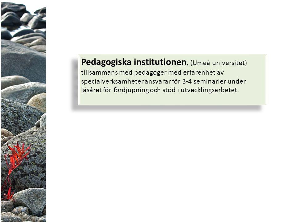 Pedagogiska institutionen, (Umeå universitet) tillsammans med pedagoger med erfarenhet av specialverksamheter ansvarar för 3-4 seminarier under läsåret för fördjupning och stöd i utvecklingsarbetet.
