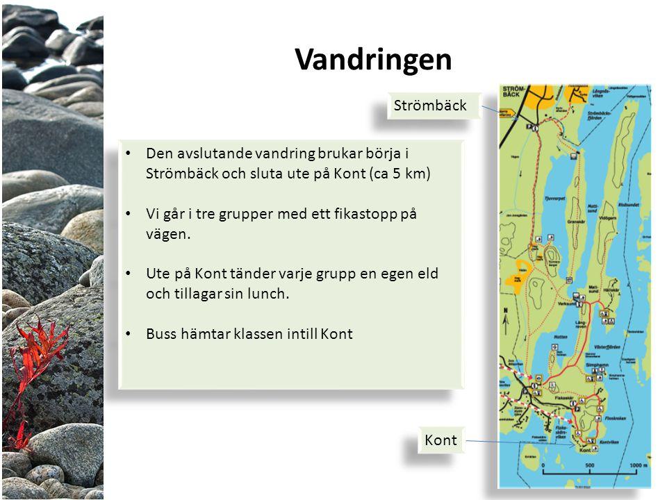 Vandringen Den avslutande vandring brukar börja i Strömbäck och sluta ute på Kont (ca 5 km) Vi går i tre grupper med ett fikastopp på vägen.