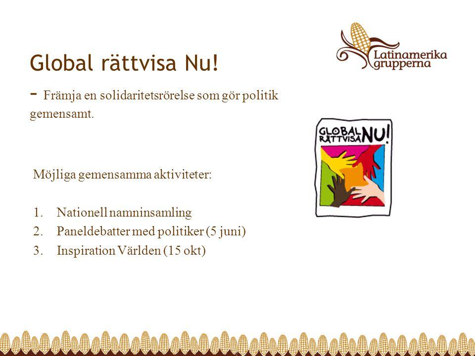 Global rättvisa Nu! - Främja en solidaritetsrörelse som gör politik gemensamt. Möjliga gemensamma aktiviteter: 1.Nationell namninsamling 2.Paneldebatt