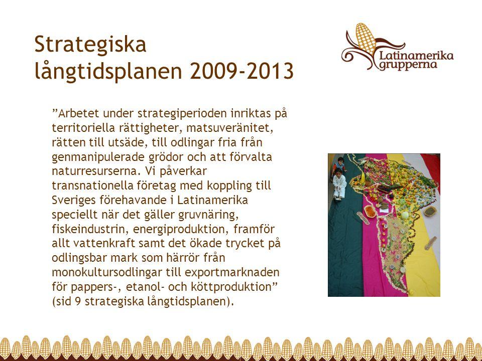 Strategiska långtidsplanen 2009-2013 Arbetet under strategiperioden inriktas på territoriella rättigheter, matsuveränitet, rätten till utsäde, till odlingar fria från genmanipulerade grödor och att förvalta naturresurserna.