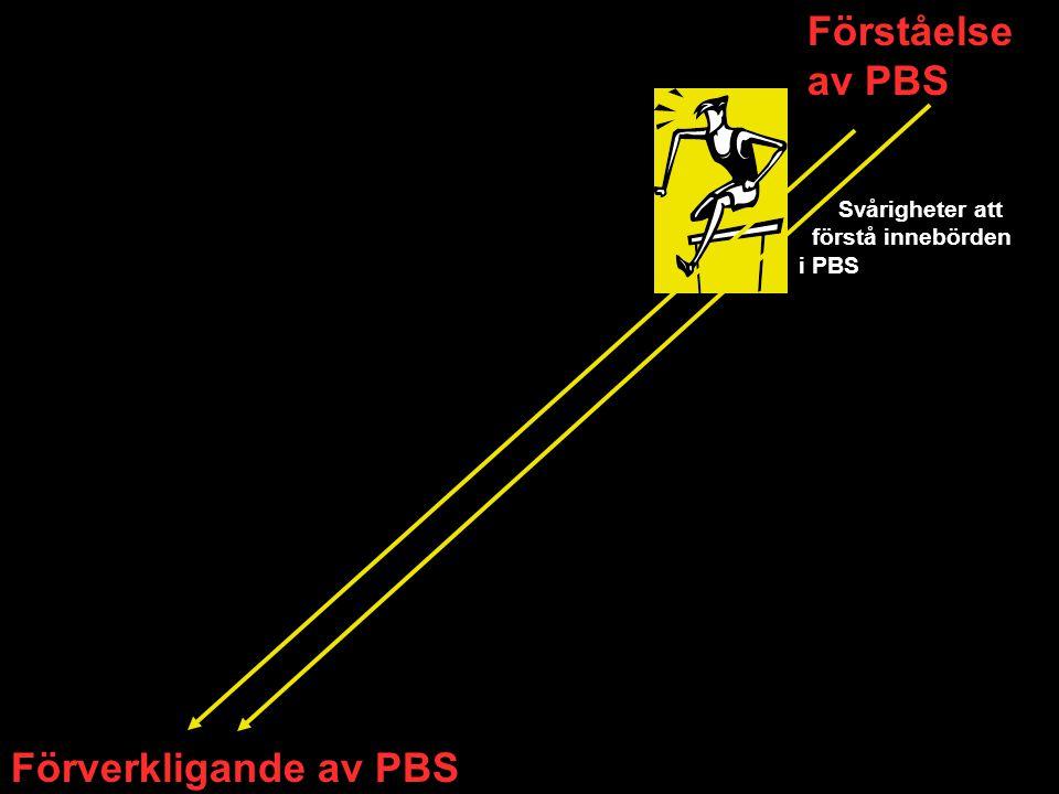 Förståelse av PBS Förverkligande av PBS Svårigheter att förstå innebörden i PBS
