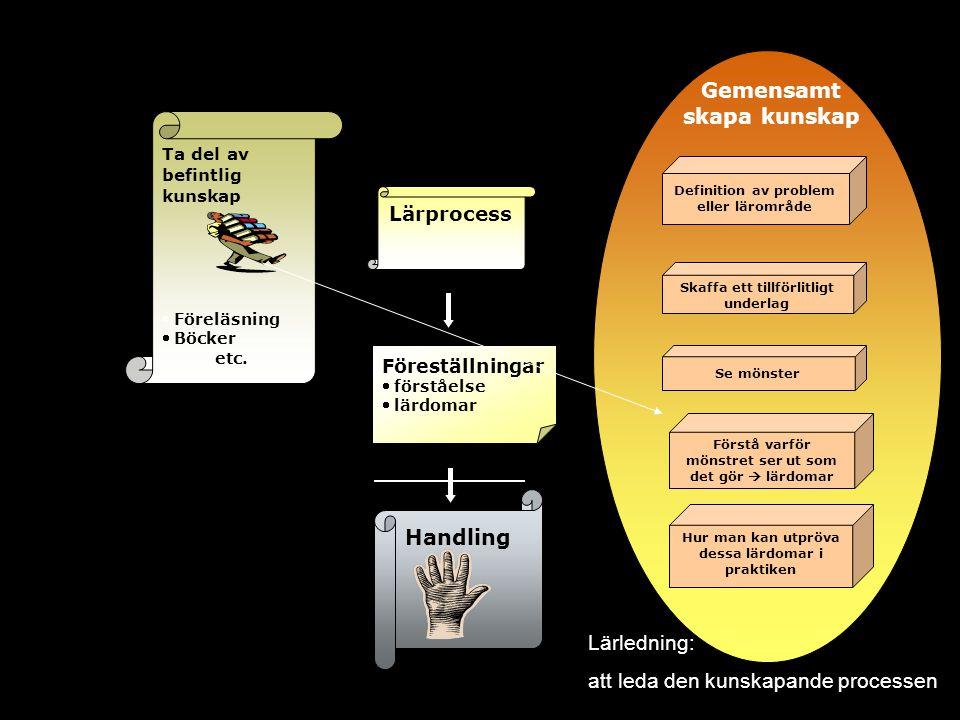 Lärprocess Handling Ta del av befintlig kunskap  Föreläsning  Böcker etc. Definition av problem eller lärområde Se mönster Förstå varför mönstret se