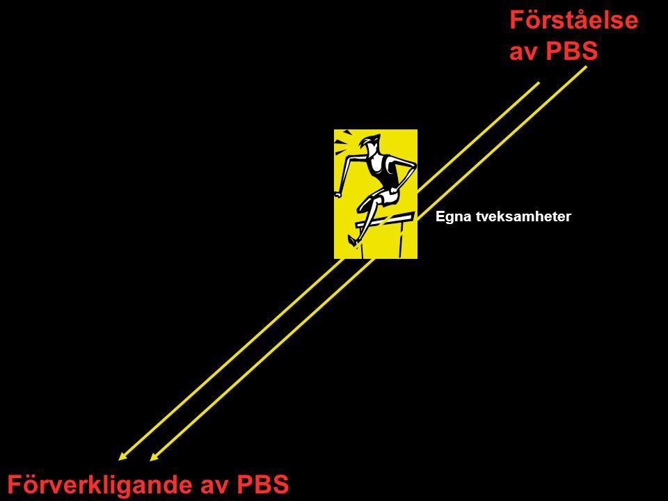 Förståelse av PBS Förverkligande av PBS Egna tveksamheter