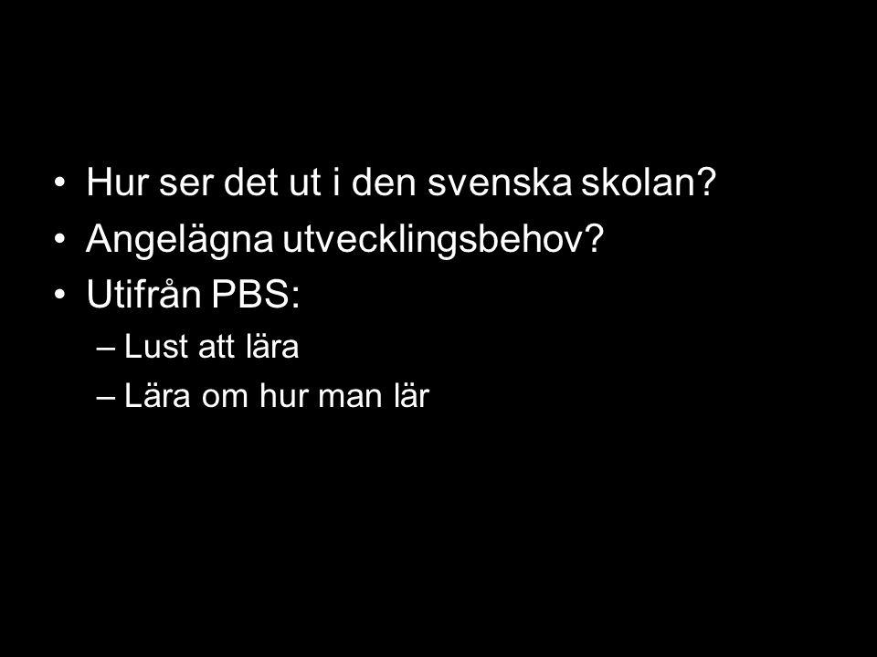 Hur ser det ut i den svenska skolan? Angelägna utvecklingsbehov? Utifrån PBS: –Lust att lära –Lära om hur man lär