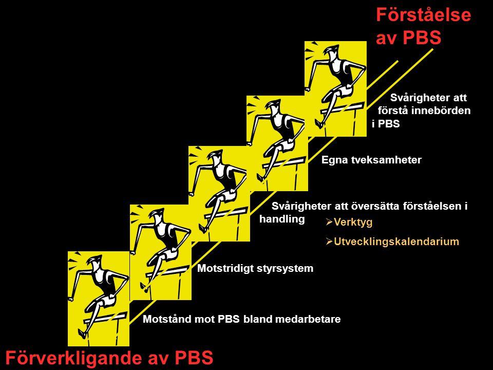Förståelse av PBS Förverkligande av PBS Egna tveksamheter Svårigheter att översätta förståelsen i handling Motstånd mot PBS bland medarbetare Motstrid